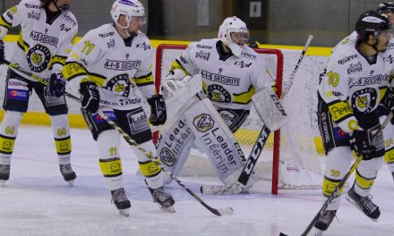 D2 : Le Roanne Hockey battu après prolongations