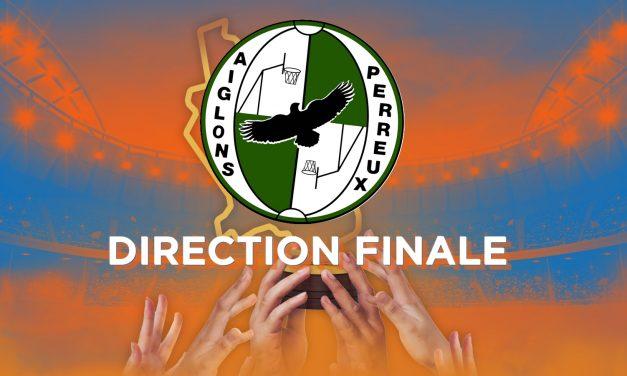 Les Aiglons de Perreux rejoignent le Roanne Hockey en finale de la Coupe des Clubs de la Loire